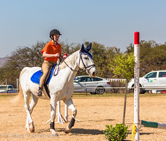 """Crossroads Equestrian Centre • <a style=""""font-size:0.8em;"""" href=""""http://www.flickr.com/photos/67597598@N08/29678687711/"""" target=""""_blank"""">View on Flickr</a>"""