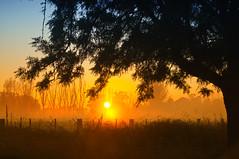 Elmore sunrise