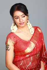 South actress MADHUCHANDAPhotos Set-3-HOT IN TRADITIONAL DRESS (40)