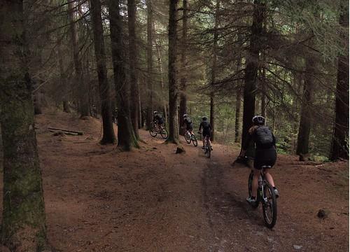 Mountain Biking in Leanachan Forest - Composite