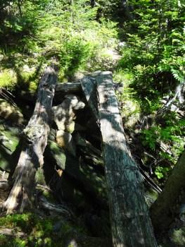 Rotting Foot Bridge on Wright Trail North Branch