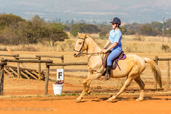"Crossroads Equestrian Centre • <a style=""font-size:0.8em;"" href=""http://www.flickr.com/photos/67597598@N08/29725367976/"" target=""_blank"">View on Flickr</a>"
