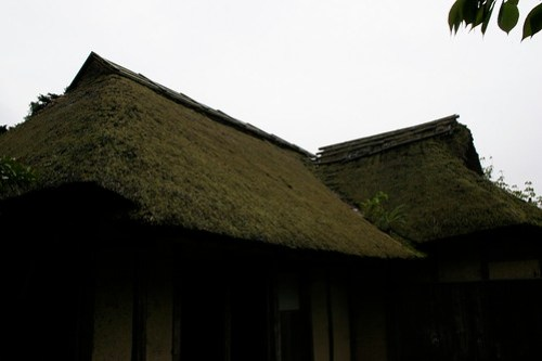 Traditional thatched roofs