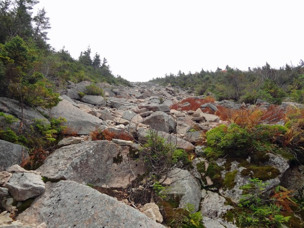 Mt. Tripyramid Upper North Slide Hike
