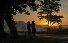 Myanmar at the crossroads