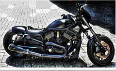 Harley - Davidson  bike, motor cycle   - prese...
