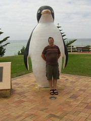 This Penguin is in Penguin in Tasmania
