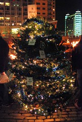 The Hilton Providence Christmas Tree