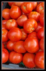 Wednesday Markets fresh tomatoes for sale-1=