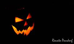 Evil Pumpkin: Profile