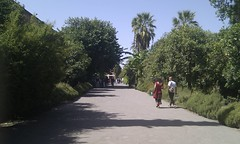 IMAG0220