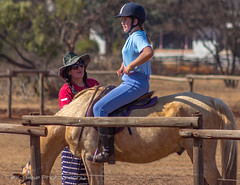 "Crossroads Equestrian Centre • <a style=""font-size:0.8em;"" href=""http://www.flickr.com/photos/67597598@N08/29678918771/"" target=""_blank"">View on Flickr</a>"