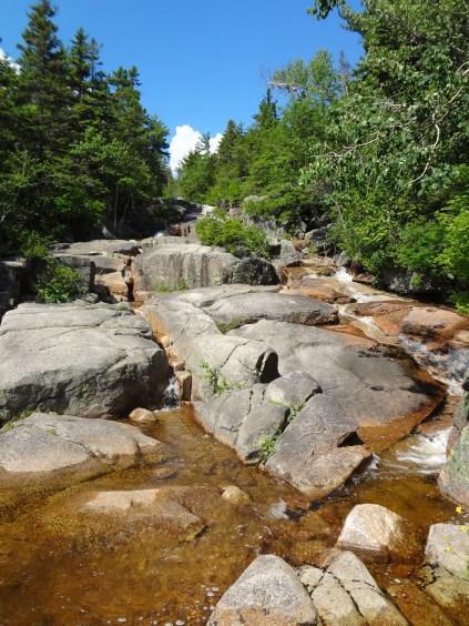 Zealand Falls on the NH Appalachian Trail