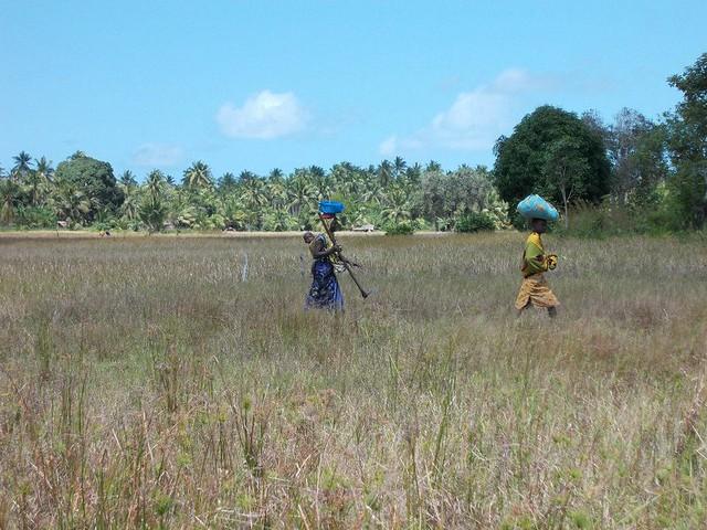 Tanzania Teaching and Beaches