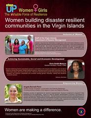 IDDR 2012 in the British Virgin Islands