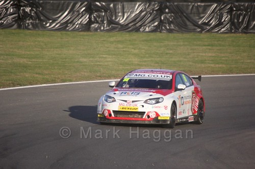 Josh Cook during the BTCC Brands Hatch Finale Weekend October 2016