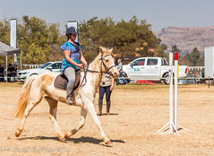 "Crossroads Equestrian Centre • <a style=""font-size:0.8em;"" href=""http://www.flickr.com/photos/67597598@N08/29133208784/"" target=""_blank"">View on Flickr</a>"