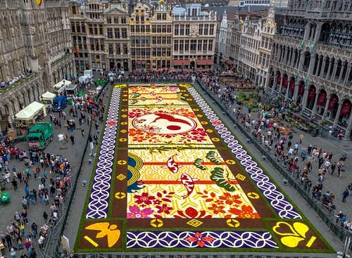 Mais de 600 mil flores formam o tapete construído a cada dois anos