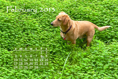 Otto's 2013 calendar - February