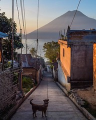 Day 532. My ankle is still in bad sorts, and since I'm probably gonna need it for a while I'm going to give myself another day of rest. In the meantime, here's one of my favorite photos in one of my favorite places - Lake Atitlan, Guatemala. While there S