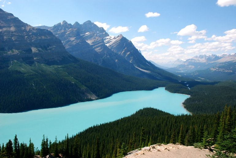 Peyto Lake by therealchrispaul, on Flickr