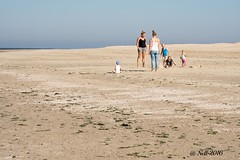 """Ameland • <a style=""""font-size:0.8em;"""" href=""""http://www.flickr.com/photos/139847504@N02/30050094001/"""" target=""""_blank"""">View on Flickr</a>"""