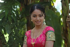 South actress MADHUCHANDAPhotos Set-3-HOT IN TRADITIONAL DRESS (11)