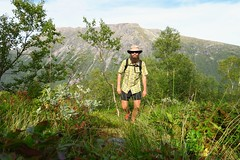 Hiking through the birch forest and out of Viromdalen.