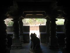 KALASI Temple photos clicked by Chinmaya M.Rao (1)