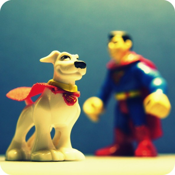 World' Of Krypto And Superman