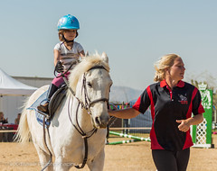 """Crossroads Equestrian Centre • <a style=""""font-size:0.8em;"""" href=""""http://www.flickr.com/photos/67597598@N08/29678729571/"""" target=""""_blank"""">View on Flickr</a>"""