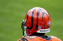 Cincinnati Bengal