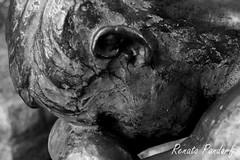 Bronze lament