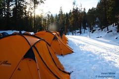 Orange tents!