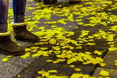 Amarillo que te pillo