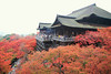 Photo:清水寺 kiyomizu-dera By