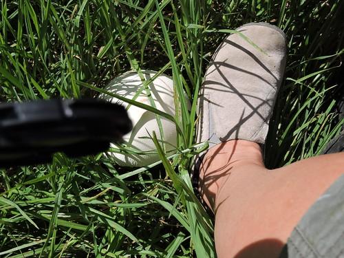 "DSCN0122 • <a style=""font-size:0.8em;"" href=""http://www.flickr.com/photos/126318089@N05/16010174483/"" target=""_blank"">View on Flickr</a>"