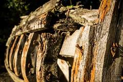 De bois et de rouille (Explore)