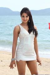 South Actress SANJJANAA Photos Set-5-Hot Piks (43)