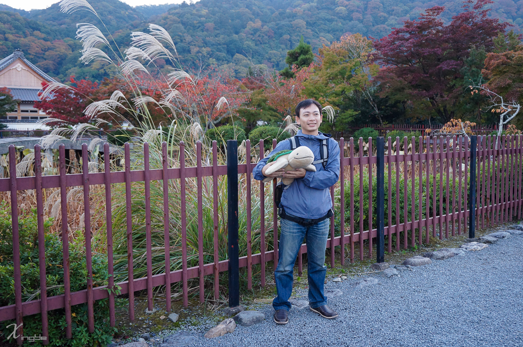 20141107-DSC01428.jpg