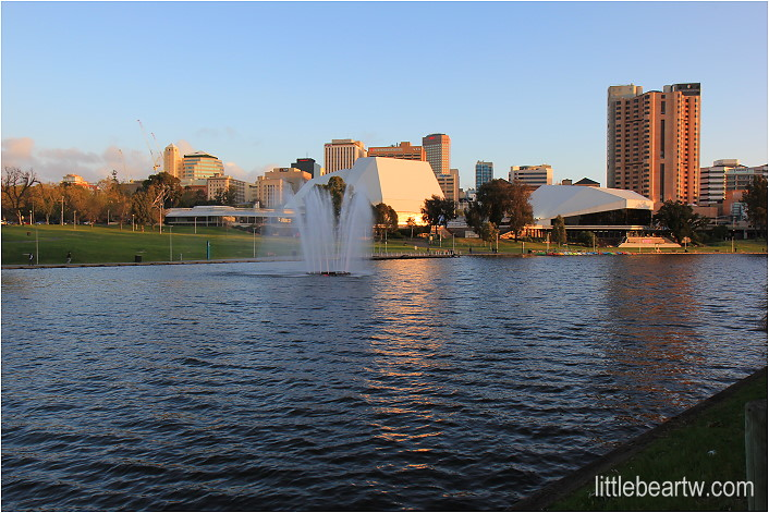 【南澳洲Day4-3】阿得雷德市區漫步:阿得雷德植物園 Adelaide Botanic Garden.托倫斯河 River Torrens - 小熊的樹刻