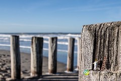 """Domburg 12.2014 • <a style=""""font-size:0.8em;"""" href=""""http://www.flickr.com/photos/84812658@N00/16019635528/"""" target=""""_blank"""">View on Flickr</a>"""