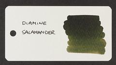 Diamine Salamander - Word Card