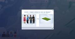 Les Sims 4 au travail : Magasin