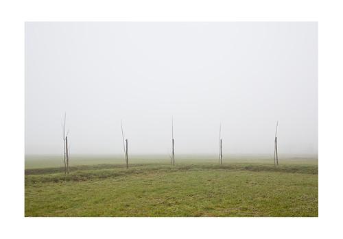 fog confini newtopographics