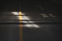 Yellow line 2