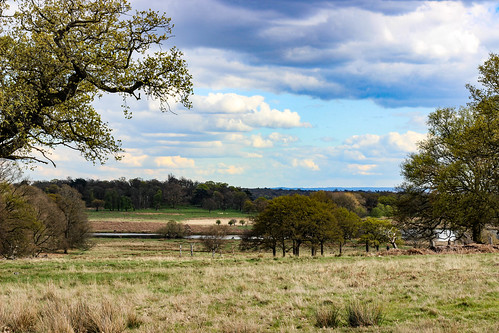 """Richmond Park • <a style=""""font-size:0.8em;"""" href=""""http://www.flickr.com/photos/134584068@N03/28929403776/"""" target=""""_blank"""">View on Flickr</a>"""