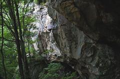 Chadwell Gap Trail
