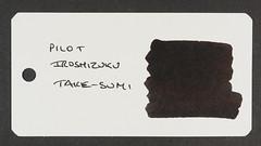 Pilot Iroshizuku Take-Sumi - Word Card