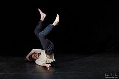 Tetra-danse__2844